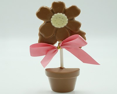 Milk Chocolate Flower Pot